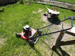 Lawnmower Removal